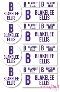 waterproof labels combo pack - set of 64 - MODERN BLOCK PURPLE ORCHID