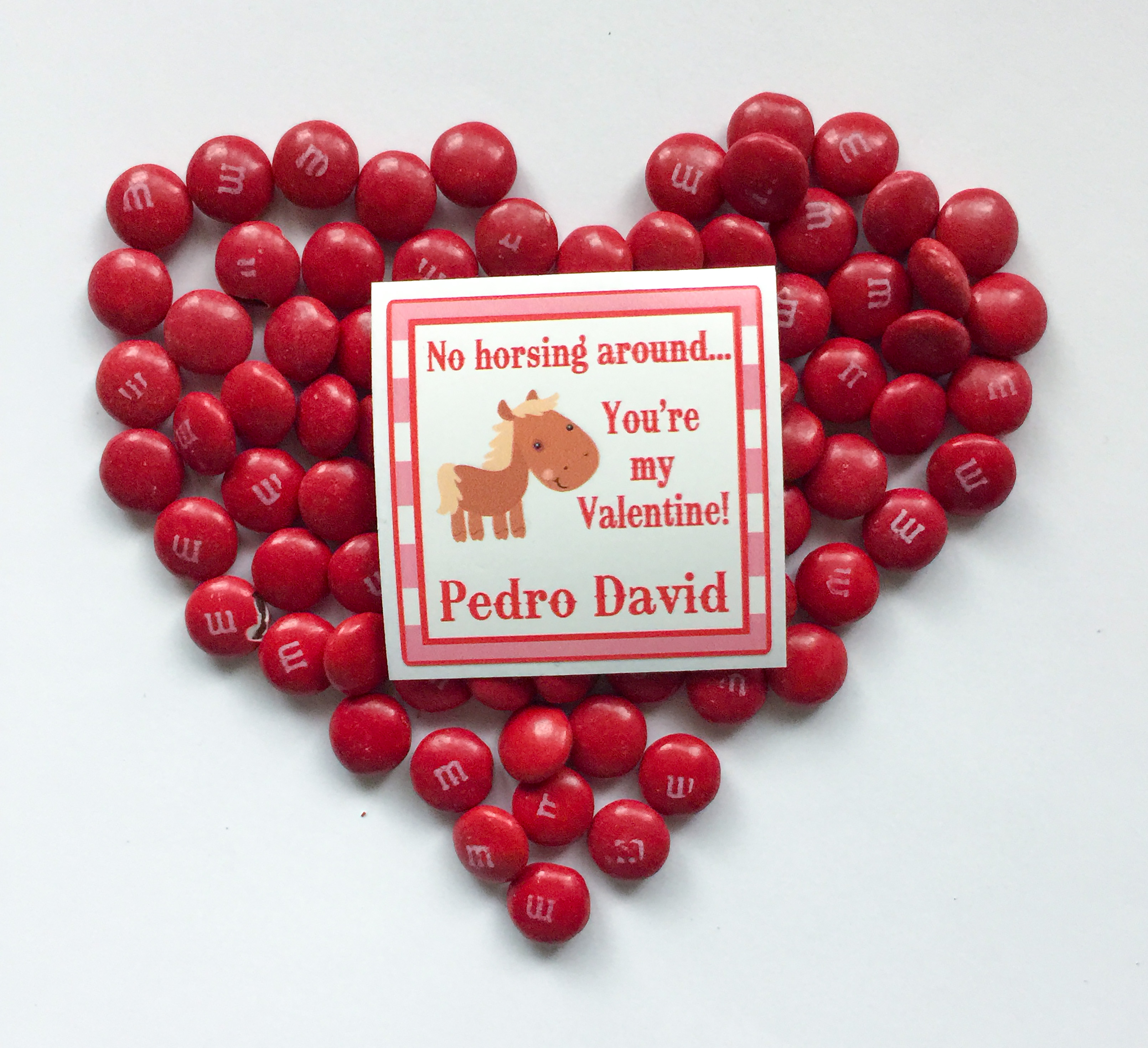 no horsing around Valentine labels - set of 24